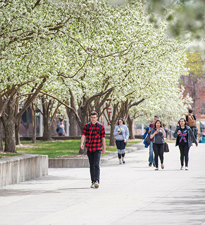 Students walking on the MSU Denver campus.