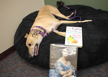 Pippi, the dog of social media specialist Kristine Dorame, checks out the new Library study space