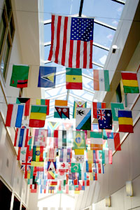 World Flags Display